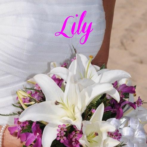 Beautiful Hawaii Wedding Photos