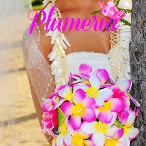 Amazing Hawaii Wedding Photos
